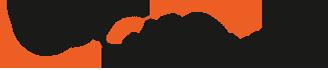 CoQ10 logo
